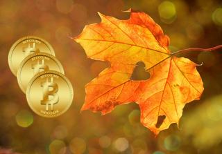 Autumn Bonus: Earn free bitcoin by CryptoAddicted
